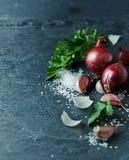 Natura morta con aglio, la cipolla, il prezzemolo ed il sale marino Immagini Stock Libere da Diritti