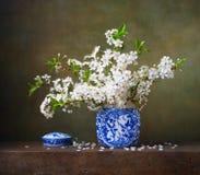 Natura morta con dei fiori di ciliegia in un vaso cinese Fotografia Stock