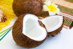 Natura morta con due parti della noce di cocco fresca matura Fotografia Stock