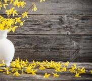 Natura morta con i fiori della molla Immagini Stock