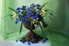 Natura morta con i fiori della molla in un vaso fotografia stock