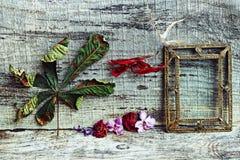 Natura morta con i fiori e le foglie su un fondo di legno Immagine Stock