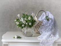 Natura morta con i fiori selvaggi della molla in anticipo fotografia stock