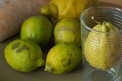 Natura morta con i frutti organici del limone e cresciuta Immagine Stock
