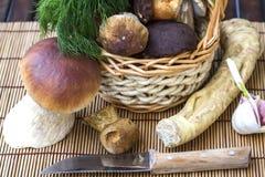 Natura morta con i funghi bianchi Fotografie Stock Libere da Diritti