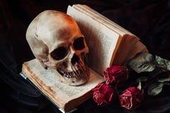 Natura morta con il cranio umano Fotografia Stock Libera da Diritti