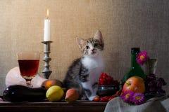Natura morta con il grap della bottiglia di verde della rosa canina dell'uva della zucca del gattino fotografia stock