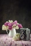 Natura morta con il lillà porpora e bianco in vaso bianco sulla tavola rosa, macro, pianta di fioritura della molla con i petali immagini stock