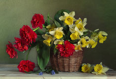 Natura morta con il mazzo dei narcisi della molla, tulipani in un canestro fotografia stock