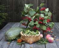 Natura morta con il mazzo di autunno e la zucca Fotografia Stock