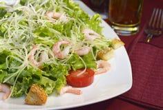 Natura morta con l'insalata e la coltelleria dell'aperitivo Fotografia Stock Libera da Diritti