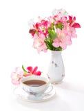 Natura morta con la tazza di tè e dei fiori Fotografia Stock