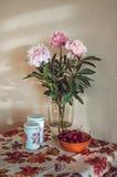 Natura morta con un mazzo fresco del mazzo delle peonie bianche e rosa in vaso di vetro, ciliege scure sulla tavola, tovaglia d'a Fotografia Stock