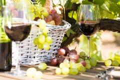 Natura morta con vetro dell'uva del vino rosso e del canestro di picnic sui tum Fotografia Stock