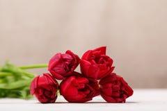 Natura morta d'annata con un mazzo della molla dei tulipani Il concetto della festa della mamma, il giorno delle donne Decori la  fotografie stock