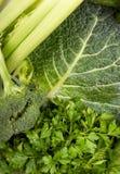 Natura morta dei broccoli immagine stock