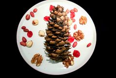 Natura morta dei dadi con i frutti secchi su un piatto fotografia stock