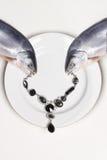 Natura morta dei gioielli e del pesce Fotografia Stock