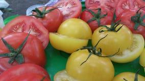 Natura morta dei pomodori Immagine Stock