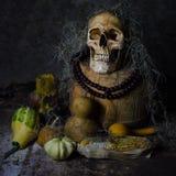 Natura morta del cranio Fotografia Stock
