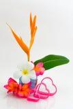 Natura morta del fiore Immagini Stock Libere da Diritti