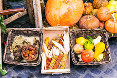 Natura morta del mercato del raccolto di autunno dalle verdure Fotografie Stock Libere da Diritti