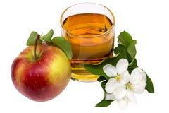 Natura morta del succo di mele Immagini Stock Libere da Diritti
