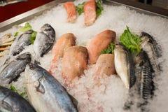 Natura morta dell'angolo alto di varietà di pesce fresco crudo che raffredda sulla B fotografia stock libera da diritti