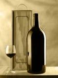 Natura morta della bottiglia e di vetro di vino Immagine Stock Libera da Diritti