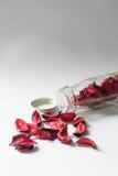Natura morta della bustina del fiore in bottiglia di vetro Fotografia Stock Libera da Diritti