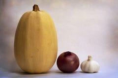 Natura morta della cipolla e dell'aglio della zucca della tagliatella degli spaghetti Immagine Stock