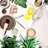 Natura morta della stazione termale con le piante medicinali ed i prodotti cosmetici su fondo grigio chiaro Vista superiore immagine stock