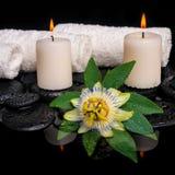 Natura morta della stazione termale del fiore della passiflora, foglia verde con goccia, asciugamano Fotografia Stock Libera da Diritti