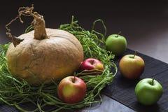 Natura morta delle mele e della zucca Fotografia Stock Libera da Diritti