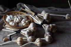 Natura morta delle teste d'aglio Fotografia Stock