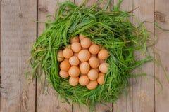 Natura morta delle uova del pollo Fotografia Stock Libera da Diritti