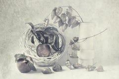Natura morta di arte con le pesche ed i ramoscelli Immagini Stock Libere da Diritti
