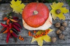Natura morta di autunno: - fotografia stock libera da diritti