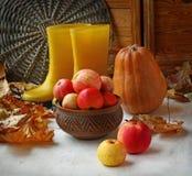Natura morta di autunno con le foglie della zucca, della mela e di giallo Immagini Stock Libere da Diritti