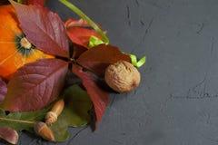 Natura morta di autunno con le foglie, la zucca ed i dadi fotografia stock