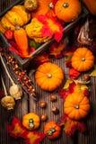 Natura morta di autunno con le zucche Immagine Stock Libera da Diritti