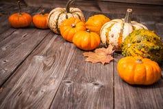 Natura morta di autunno con le zucche e le foglie Immagini Stock Libere da Diritti