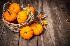 Natura morta di autunno con le zucche e le foglie Fotografia Stock