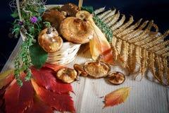 Natura morta di autunno con un canestro dei funghi Fotografie Stock