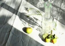 Natura morta di mattina con la bottiglia e le ombre Immagine Stock Libera da Diritti