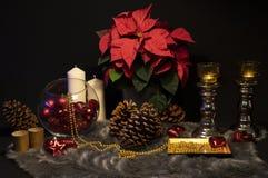 Natura morta di Natale | Composizione nel centro di Natale fotografia stock libera da diritti