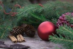Natura morta di Natale della palla rossa, coni Fotografia Stock Libera da Diritti