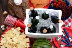 Natura morta di picnic Fotografie Stock