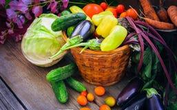 Natura morta di verdure del raccolto fotografie stock