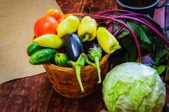 Natura morta di verdure del raccolto fotografia stock libera da diritti